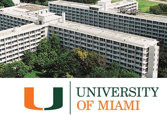 University Window Tinting